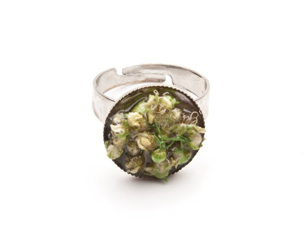 Кольцо из сухоцвета белых цветов в эпоксидной смоле
